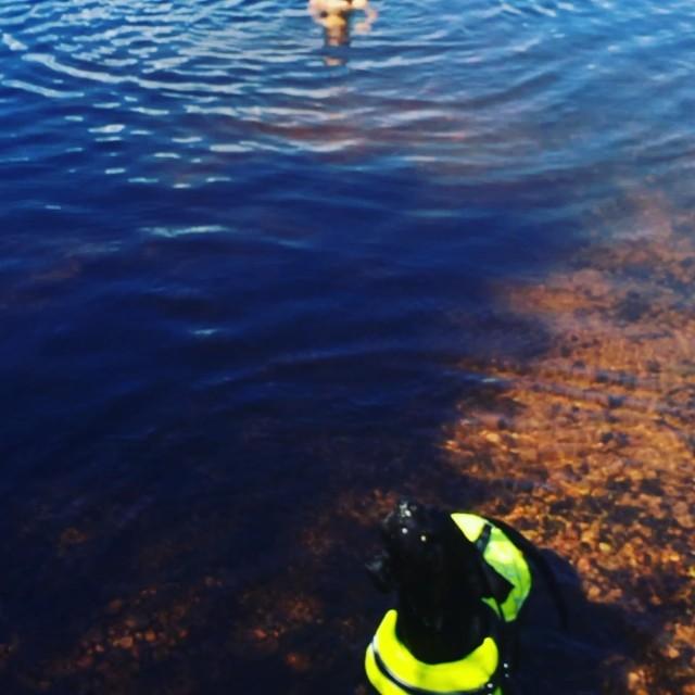 Nässjön #älvdalen #näset #leonlopez