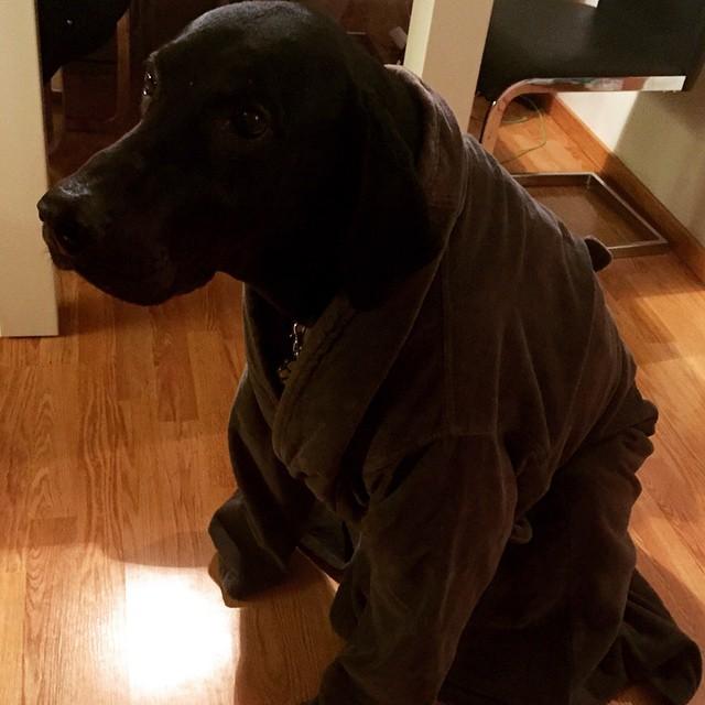 Jag gick låna Husses morgonrock när jag frös....