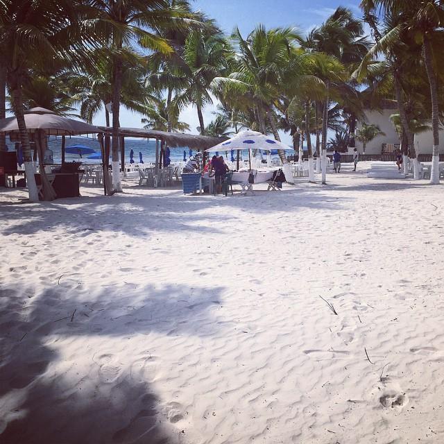 Jobbigt att sova på stranden:) man blir liksom väckt av vågorna och 28 grader sol. Så att jag blir tvungen att dricka en frozen mojito!!!!skitjobbigt verkligen :) #tulum #mexico #playaparaiso
