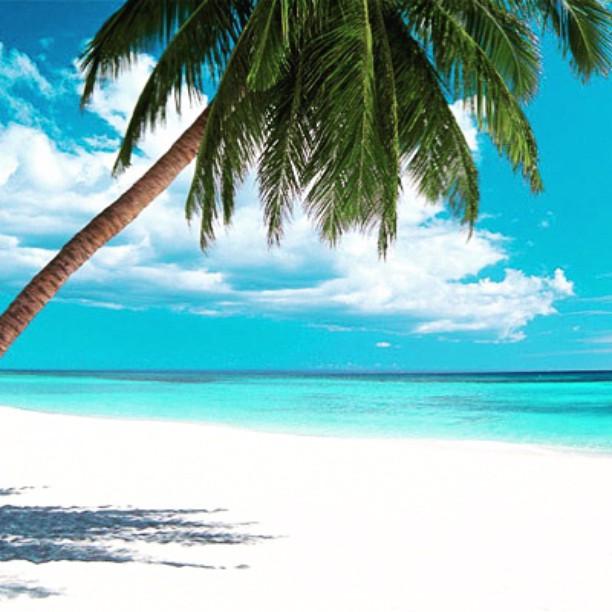 Står högt upp på önskelistan just nu. . Sommarsverige levererar liksom inte. #resa #travel #vitsand #solen
